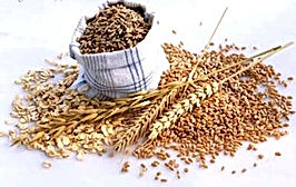 alimentos-fontes-de-fibras