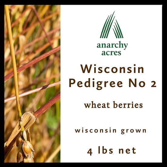 4 lb Wisconsin No 2 Berries