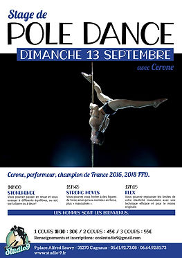 StagePoleDance - Cerone.jpg