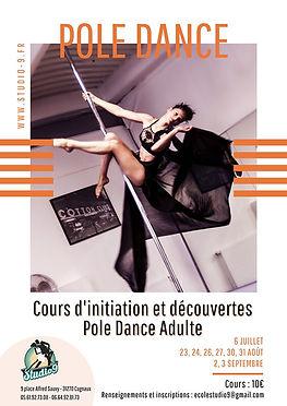 Affiche-Pole-Dance-cours-Initiation-Adulte.jpg