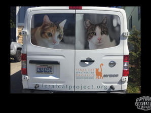 Perforated Nissan NV2500 Van graphics for Feral Cat Project of Lynnwood by Vinyl Lab NW, s