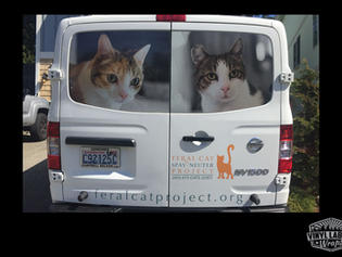 Nissan NV wrapped with vinyl perforated graphics by Vinyl Lab NW of Mukilteo, a project for Feral Cat Project of Lynnwood Washington