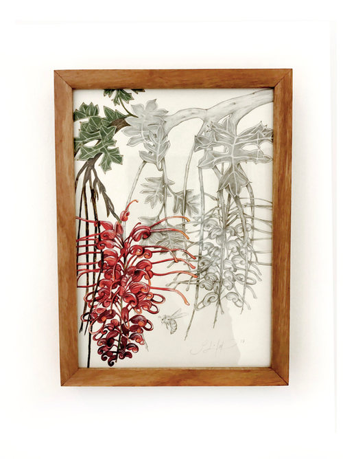Fuchsia Grevillea