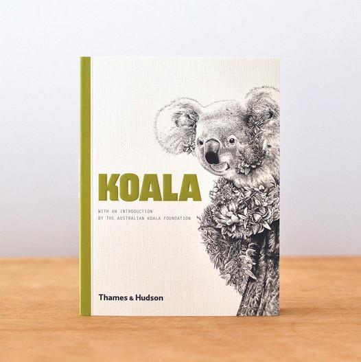 Illustration for Koala by Thames and Hudson