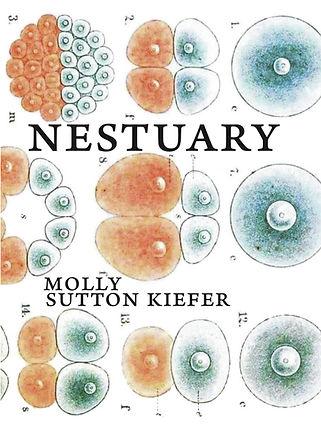 Nestuary.jpg