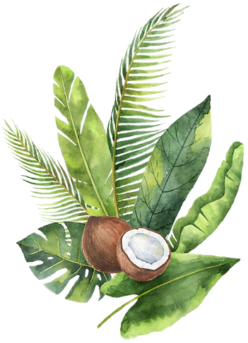 coconut leafs.png