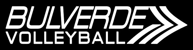 BulverdeVolleyball