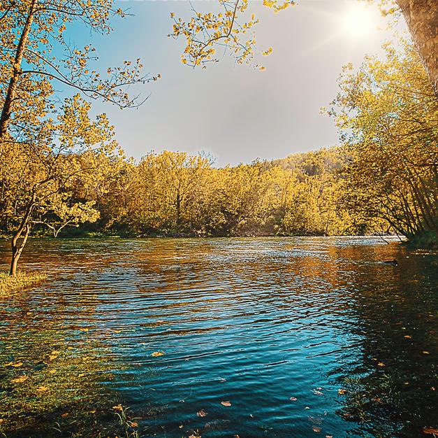 Beaver Lake In Fall