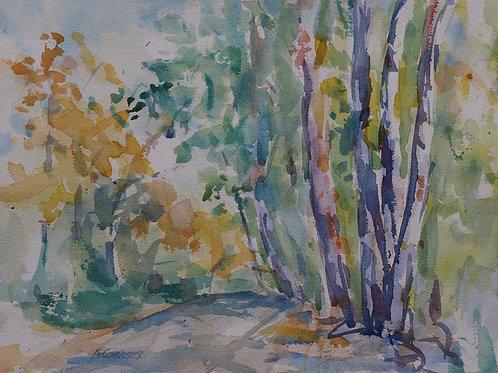 Fall scene in Weston Bend State Park