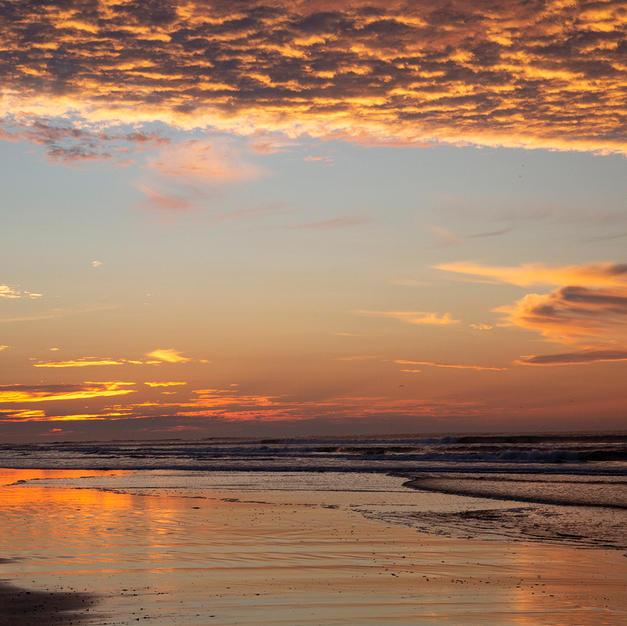 Colors at Sunrise