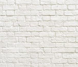לבנים לבנות.jpg