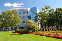 Commercial Office Park Landscaping