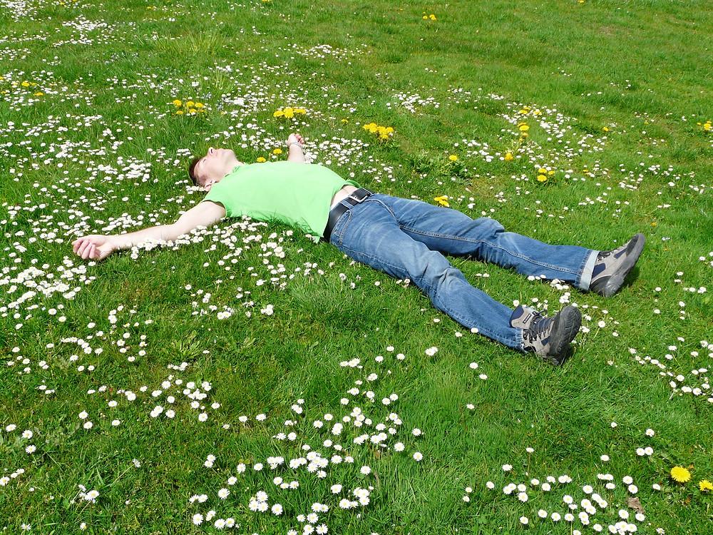 Enjoy your beautiful lawn