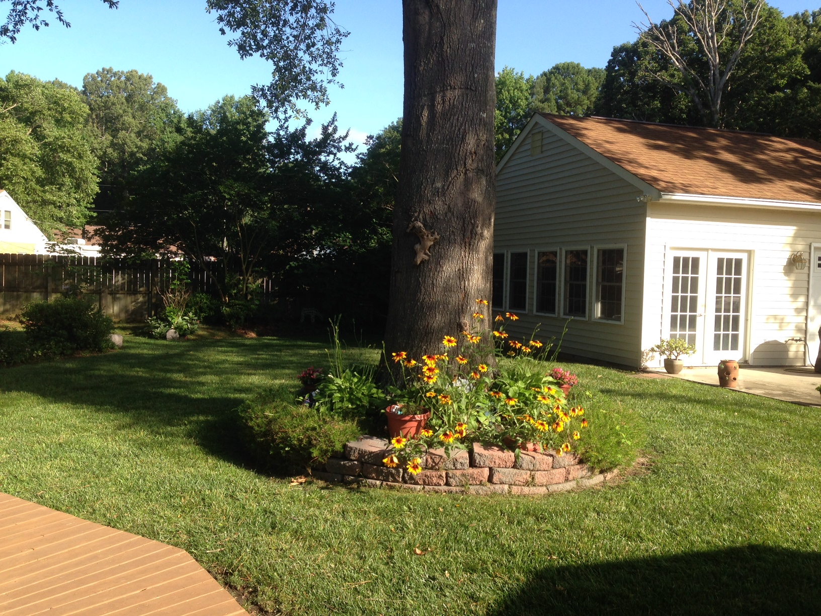 Gorgeous lawn and tree covergarden