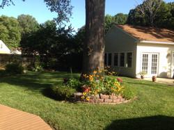 Beautiful tree ground cover garden