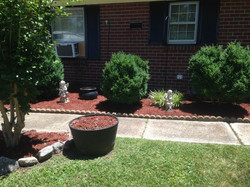 Siding, mulching and hedges