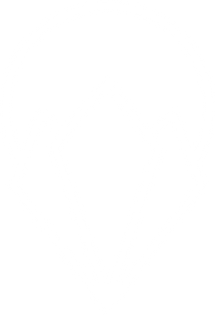 RAY_Logo_Only_WHITE.png