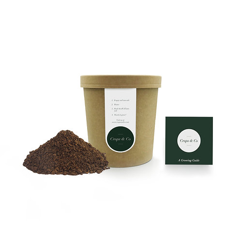 Basic Pot & Soil