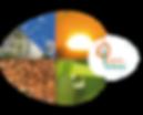 bulle+logo-geo-version-vert-orange.png