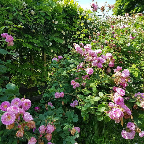 bloomsbury39.jpeg