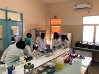A group of Senagalese scientists discuss their work at the Regional Center of Excellence on Dry Cereals and Associated Crops (CERAAS) in Thies, Senegal