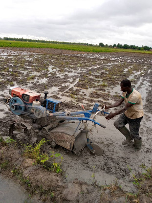 A planter being used in Burkina Faso