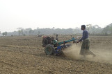 Sowing sunflower and maize seed using the power-tiller-operated-seeder (PTOS) at Noiltala in Dumuria, Khulna