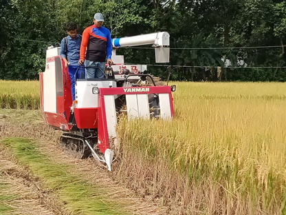The combine harvester in Bangladesh