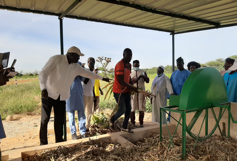 ASMC team members Dr. Tim Harrigan and Robert Burdick trained Senegalese artisans who built 6 biomass choppers during the agropastoralists leaders of the peanut basin visit to CERAAS in Thies, Senegal