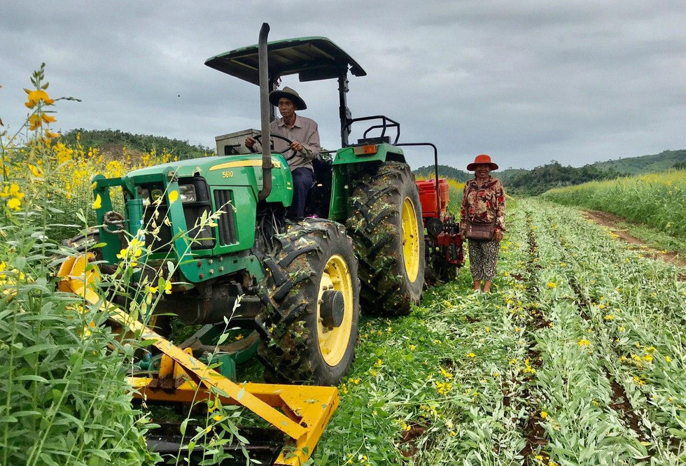 Conservation agriculture on display in Cambodia. The tractor powered roller crimper is used to prepare a seedbed for the no-till drill to plant into