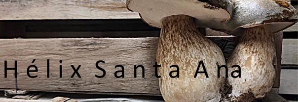 Hélix Santa Ana