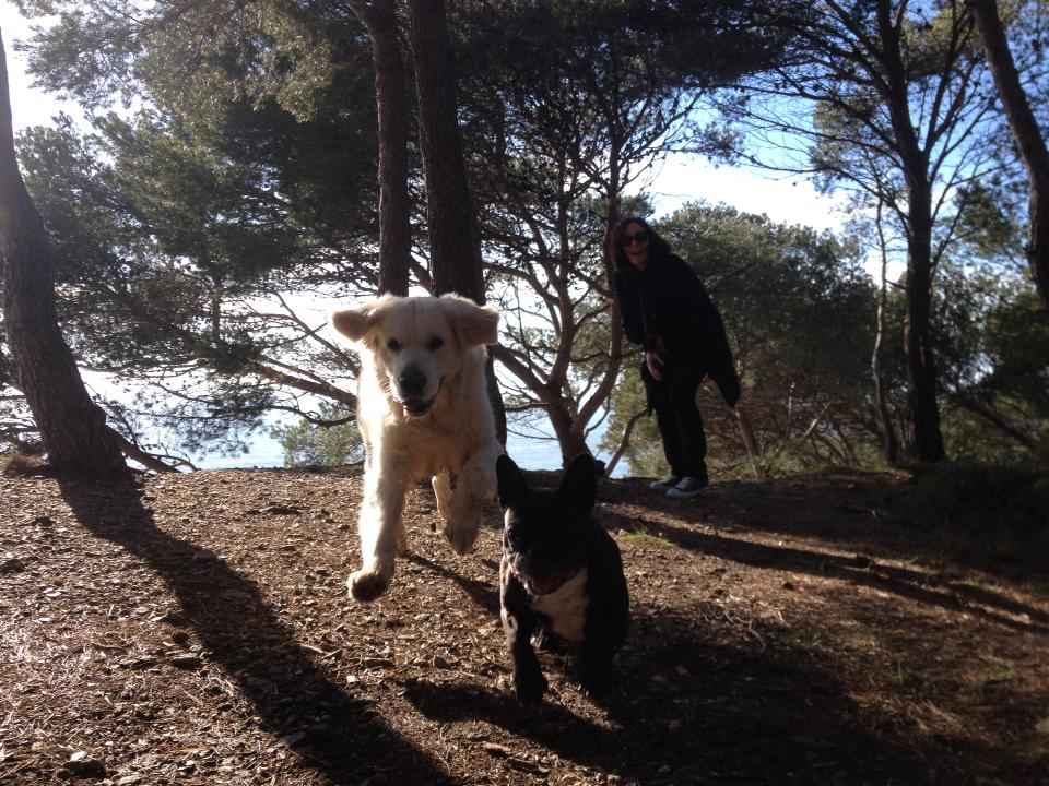 Guizmo, Bambou et Anne