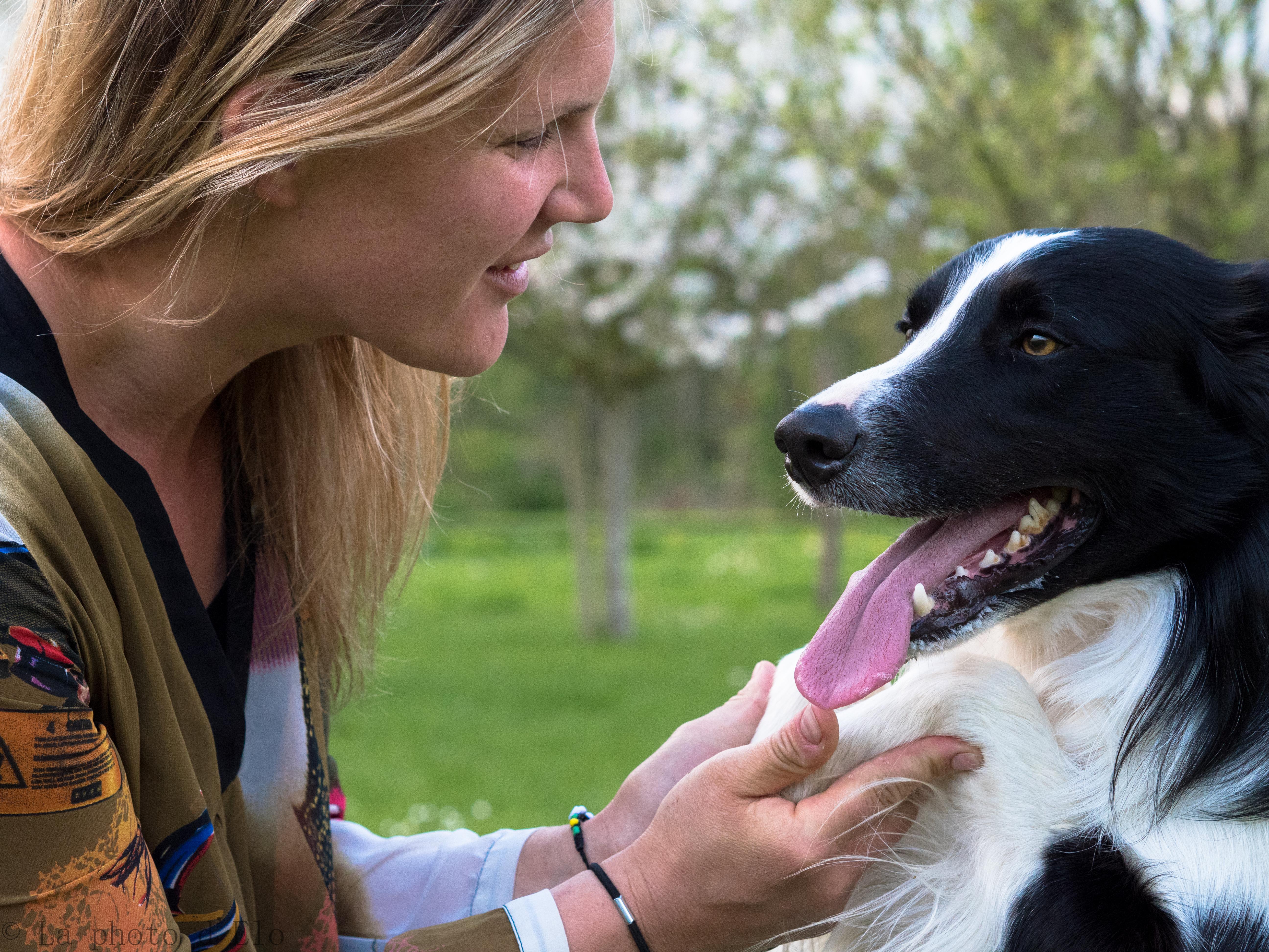complicité chiens (40)