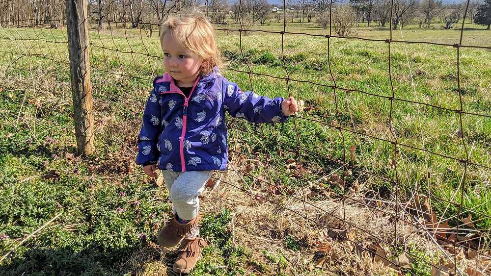 Toddler leaning on a fence with a farm in the background