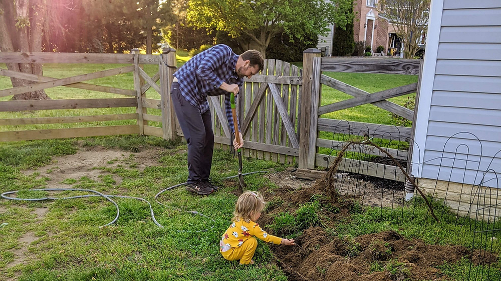 Man outlining new garden bed with daughter's oversight