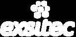 Exsitec_Logo.png