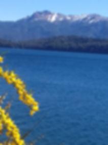 Lago Nahuel Huapi a 50 metros