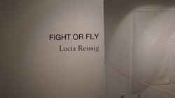 fight or fly