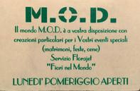 M.O.D. Fiorista