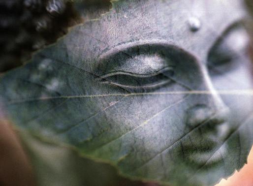 Sąmoningumo galia