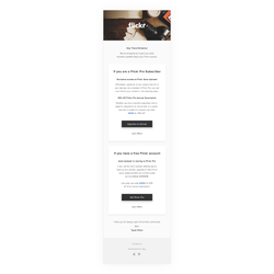 Service Email — All Flickr Users