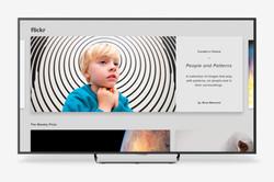 Flickr Apple TV Home