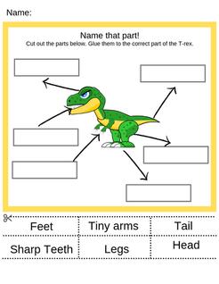 Parts of a T-rex