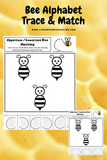 Alphabet Trace & Match life and homeschooling