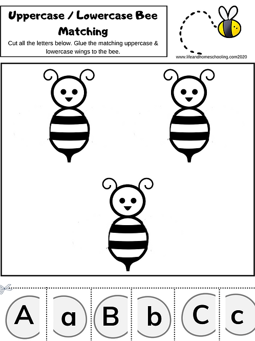 Bee Alphabet Matching