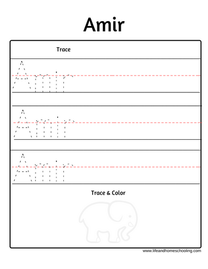 Amir name trace