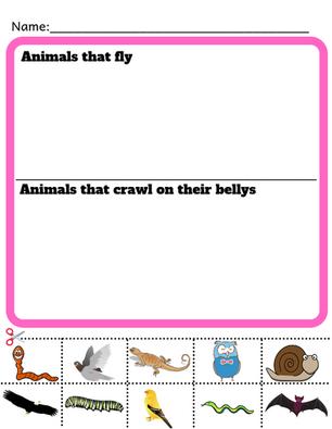 Kindergarten Science Worksheet
