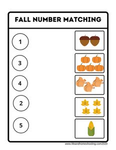 Fall Number Matching