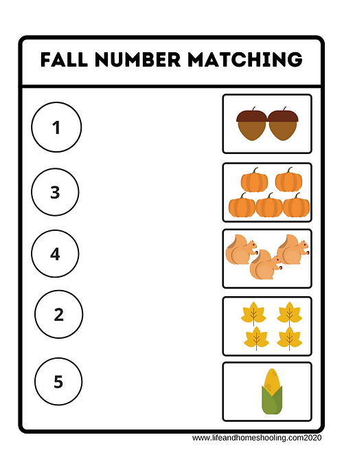 Fall Themed Number Match