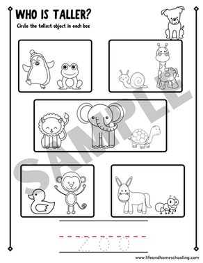 Free Preschool Math Tall & Short Printable Worksheet
